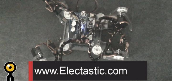 Quadruped Robot